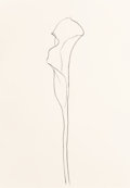 Prints, Ellsworth Kelly (1923-2015). Calla Lily 3, 1984. Lithograph on Rives BFK paper. 36 x 25 inches (91.4 x 63.5 cm) (sheet)...