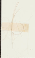 Political:Presidential Relics, Thomas Jefferson: Strands of Hair....