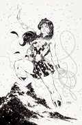 Original Comic Art:Splash Pages, Jim Lee - Wonder Woman Pin-Up Original Art (DC, 2005)....