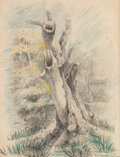 Fine Art - Work on Paper:Drawing, American School (20th Century). Untitled, 1859. Pencil andcolored pencil on paper. 14 x 10-1/4 inches (35.6 x 26 cm) (s...