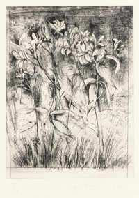 Jim Dine (American, b. 1935) Superb Lilies from A Temple of Flora, 1978 Etching and drypoint with ha
