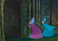 Animation Art:Production Cel, Sleeping Beauty Flora and Fauna Production Cel (Walt Disney,1959)....