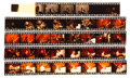 Music Memorabilia:Photos, Jerry Lee Lewis - Group of Five Color Negative Strips (circalate-1970s)....