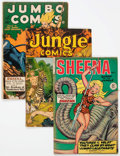 Golden Age (1938-1955):Adventure, Sheena-Related Group of 4 (Fiction House, 1940s-50s) Condition: Average GD.... (Total: 4 Comic Books)