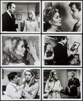 """Movie Posters:Foreign, Belle de Jour (Allied Artists, 1967). Photos (12) (8"""" X 10""""). Foreign.. ... (Total: 12 Items)"""