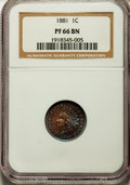 Proof Indian Cents: , 1881 1C PR66 Brown NGC. NGC Census: (12/3). PCGS Population (18/0). Mintage: 3,575. Numismedia Wsl. Price for problem free ...