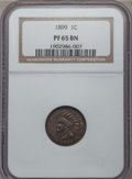 Proof Indian Cents, 1899 1C PR65 Brown NGC. NGC Census: (13/8). PCGS Population (11/10). Mintage: 2,031. CDN Wsl. Price for problem free NGC/PC...