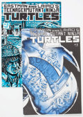 Modern Age (1980-Present):Superhero, Teenage Mutant Ninja Turtles #2 and 3 First Editions Group (MirageStudios, 1984-85).... (Total: 2 Comic Books)