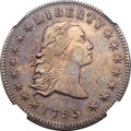 Early Dollars, 1795 $1 Flowing Hair, Three Leaves, Two Mint Silver Plugs, B-5, BB-27, R.1, AU53 NGC....