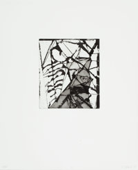 Brice Marden (b. 1938) Etchings to Rexroth, 16, 1986 Etching and sugarlift aquatint on wove paper