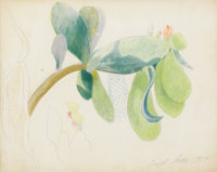 JOSEPH STELLA (American 1877-1946) Prickly Pear Cactus Fruit, 1919 Silverpoint and crayon on paper