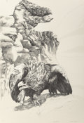 Fine Art - Work on Paper:Print, Ellen Lanyon (American, 1926-2013). Eagle Beak; Black Egret (two works), 1985. Lithograph, each. 44-1/2 x 30 inches ... (Total: 2 Items)