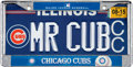 "Baseball Collectibles:Others, Circa 2015 Ernie Banks Personally Owned ""Mr. Cub"" License Plate. ..."