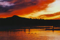 Fine Art - Work on Paper:Print, Thomas D. Mangelsen (American, 20th Century). Brooks River Sunset, 1993. Color photograph. 30-1/2 x 44-1/2 inches (77.5 ...