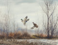 Works on Paper, David Hagerbaumer (American, 1921-2014). Two Ducks in Flight, 1966. Watercolor on paper. 16-1/4 x 21-1/4 inches (41.3 x ...
