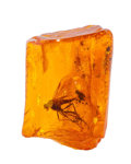 Amber, Amber with Inclusions. Succinite. Eocene. Baltic Coast.Kaliningrad Russia. 1.06 x 0.76 x 0.60 inches (2.69 x 1.93 x 1.53...