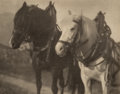Photographs:Photogravure, Alfred Stieglitz (American, 1864-1946). Horses, 1904.Photogravure. 7-1/8 x 9 inches (18.1 x 22.9 cm). ...