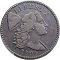 Large Cents, 1794 1C Head of 1794, S-52, B-44, High R.5, Fine 12 Bland, Fine 12 Noyes; VF20 PCGS Secure. ...