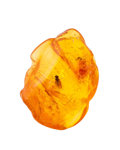 Amber, Amber with Inclusions. Succinite. Baltic Coast.Russia. 0.87 x 0.64 x 0.39 inches (2.20 x 1.62 x 1.00cm). ...