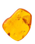 Amber, Amber with Inclusions. Succinite. Baltic Coast. Russia. 1.11 x 0.91 x 0.35 inches (2.82 x 2.30 x 0.90 cm). ...