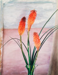 Photographs:Dye-transfer, Walter Nelson (American, b. 1942). Red Hot Pokers, Santa Fe, 1983. Dye transfer. 14-1/4 x 11-1/8 inches (36.2 x 28.3 cm)...
