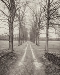 Photographs:Platinum-palladium, Michael Lardizabal (American, 20th Century). New Paltz, NewYork, 1994. Platinum-paladium. 9-5/8 x 7-3/4 inches (24.4 x ...
