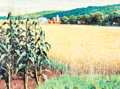 Mainstream Illustration, William Medcalf (American, 20th Century). Cornfield. Oil onboard. 30 x 40 in.. Signed lower right. ...