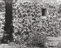 Photographs, Manuel Álvarez Bravo (Mexican, 1902-2002). Casa de Lava, 1964. Gelatin silver, printed later. 10-1/2 x 13-1/2 inches (26...