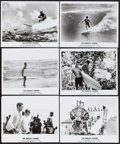 "Movie Posters:Sports, The Endless Summer (Cinema 5, 1966). Photos (13) (8"" X 10""). Sports.. ... (Total: 13 Items)"