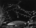 Photographs, Brett Weston (American, 1911-1993). Hawaii: Fifty Photographs by Brett Weston and Untitled (book and photograph). Bo... (Total: 2 Items)