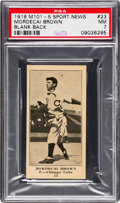 Baseball Cards:Singles (Pre-1930), 1916 M101-5 Blank Back (Sporting News) Mordecai Brown #23 PSA NM 7- Pop One, None Higher! ...