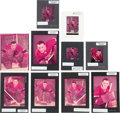 Hockey Collectibles:Photos, 1957 Jacques Plante Color Negatives by Ozzie Sweet Lot of 10....