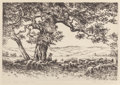 Prints, Hans Kleiber (German/American, 20th Century). The Old Cottonwood Tree. Etching. 7-1/4 x 10-3/4 inches (18.4 x 27.3 cm) (...