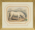 Decorative Arts, Continental, An Equestrian Print in Giltwood Frame: The Arabian, 19thcentury. 18-3/4 x 21-7/8 inches (47.6 x 55.6 cm) (frame...