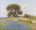 Texas:Early Texas Art - Impressionists, PORFIRIO SALINAS (1910-1973). Bluebonnet Time, 1940s. Oil oncanvas. 27 x 33 inches (68.6 x 83.8 cm). Signed lower left...