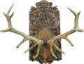 Decorative Arts, Continental, A Large Continental Antler Trophy, early 20th century. 40 h x 35 wx 34 d inches (101.6 x 88.9 x 86.4 cm). ...