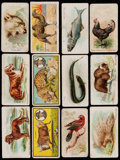 "Non-Sport Cards:Lots, 1910's Early Candy & Gum ""E"" Non-Sports Card Collection (134) -All Animal Cards. ..."