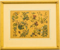 Prints, Set of Four Botanical Lithographs. 19-7/8 x 23-3/4 inches (50.5 x 60.3 cm) (framed, each). ... (Total: 4 Items)