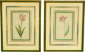 Decorative Arts, Continental, A Pair of Framed Botanical Prints. 24-3/4 x 19-1/2 inches (62.9 x49.5 cm) (framed, each). ... (Total: 2 Items)