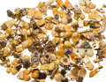 Estate Jewelry:Lots, Elk's Tooth, Coral, Enamel, Gold, Base Metal Jewelry 1lb 4 oz . ...