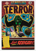 Golden Age (1938-1955):Horror, Startling Terror Tales #13 (Star Publications, 1952) Condition:FN+....