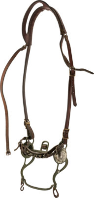 Visalia Bit with Leather Headstall