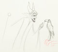 Animation Art:Production Drawing, Sleeping Beauty Maleficent and Diablo Animation Drawing (Walt Disney, 1959)....
