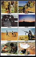"""Movie Posters:Adventure, Walkabout (20th Century Fox, 1971). Lobby Card Set of 8 (11"""" X14""""). Two schoolchildren stranded in the Australian outback w...(Total: 8 Items)"""