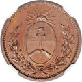 Argentina, Argentina: Buenos Aires. Provincial copper Proof Pattern Decimo1822 PR66 Brown NGC,...