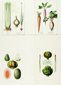 Prints:Contemporary, Group of Approximately 150 Fruit and Vegetable Reproduction Prints.Circa 1970. Various sizes, the largest matted to an over...