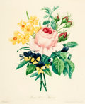 Prints:Contemporary, [Botanical Illustrations]. Group of Approximately FortyReproduction Prints Depicting Various Flowers and Plants. [N.p.,n.d...