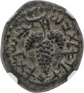 "Ancients:Judaea, Ancients: JUDAEA. Bar Kokhba Revolt (AD 132-135). Æ 18mm ""smallbronze"" (6.78 gm). NGC AU 5/5 - 4/5...."