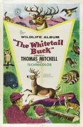 "Movie Posters:Short Subject, The Whitetail Buck (RKO, 1955). One Sheet (27"" X 41""). The""Wildlife Album"" was a series of shorts about the great outdoors..."
