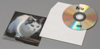 Peter Fischli & David Weiss Büsi (Kitty), 2001 DVD film duration 6 minutes and 30 seconds The DVD